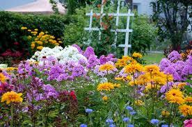 fleurir le jardin