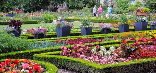 Les cloueuses et agrafeuses pneumatiques astuces bricolage - Astuce bricolage jardin ...