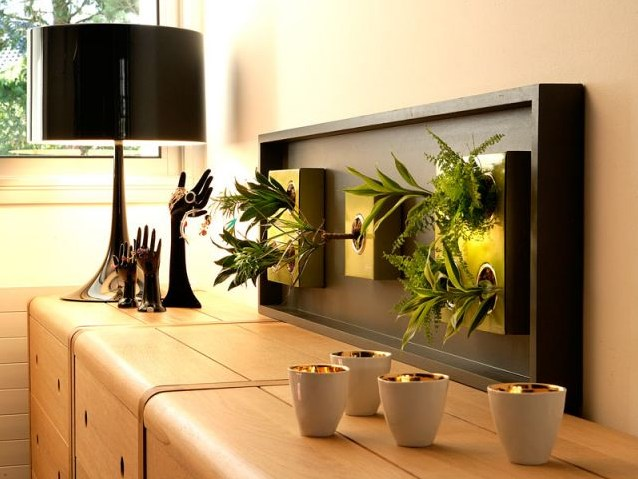 tendance d coration avec plantes d 39 int rieur bricolage. Black Bedroom Furniture Sets. Home Design Ideas
