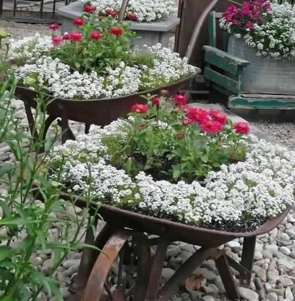Id es de d coration du jardin avec des brouettes for Brouette de jardin