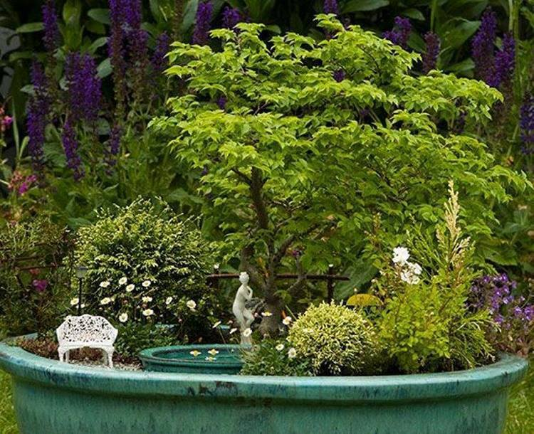 Emejing Mobilier De Jardin Miniature Photos - Awesome Interior Home ...