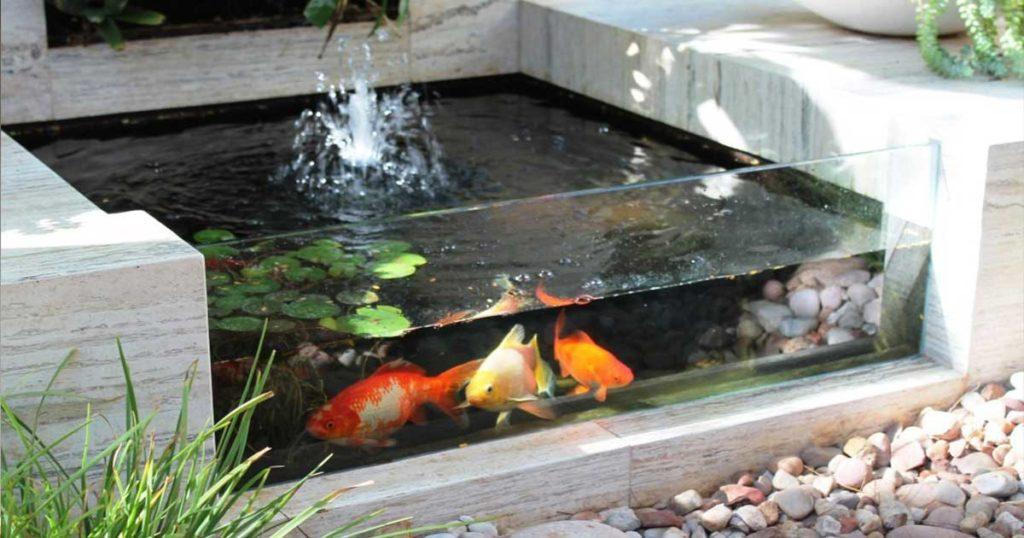 selection bassin de jardin