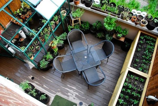 envie de manger vos propres l gumes songez une plantation de potager astuces bricolage. Black Bedroom Furniture Sets. Home Design Ideas