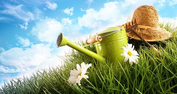 Bien choisir son paysagiste tout un art astuces for Conseil de jardinier