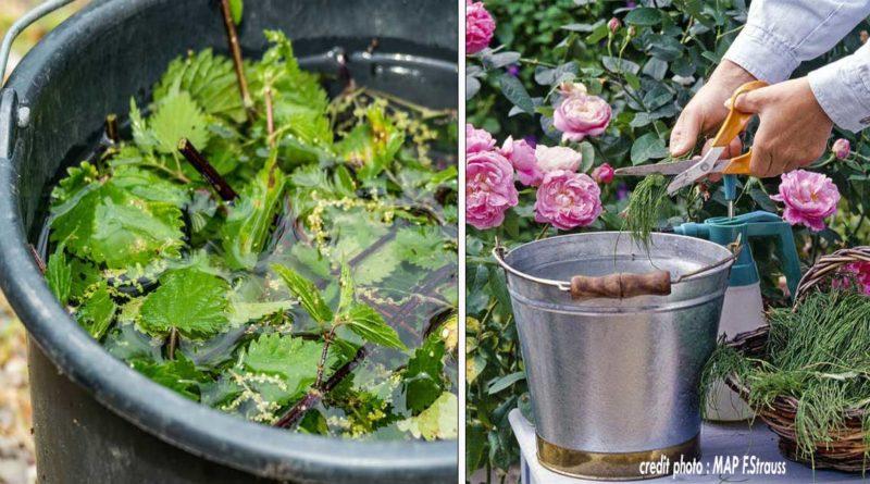 recettes macreations jardin