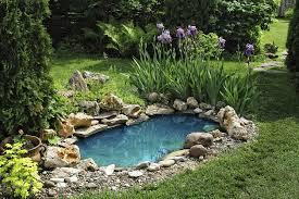 L\'entretien du bassin (jardin d\'eau)! - Astuces Bricolage