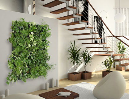 R alisation d un mur v g tal flowall avec arrosage for Mur vegetal interieur maison