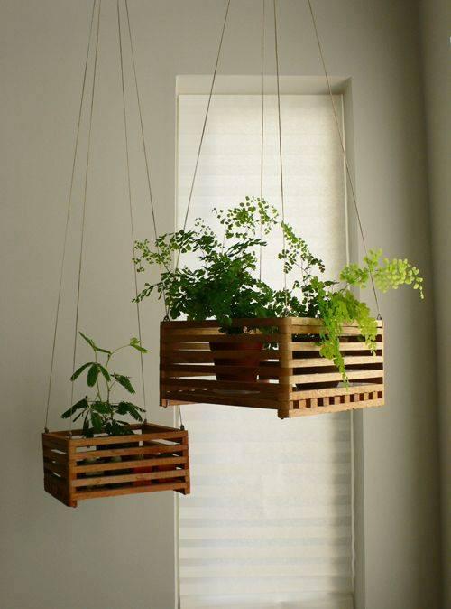 gagner de l 39 espace plantes suspendues astuces bricolage. Black Bedroom Furniture Sets. Home Design Ideas