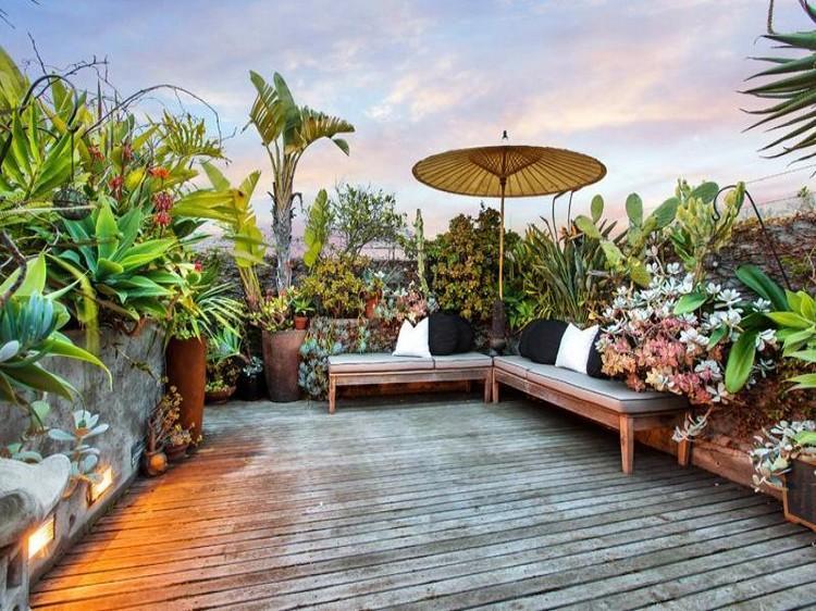 jardin-sur-le-toit-terrasse-plantes-exotiques-succulentes-palmiers-bancs-parasol
