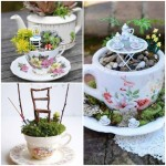 Transformer une vieille tasse en un mini-jardin!