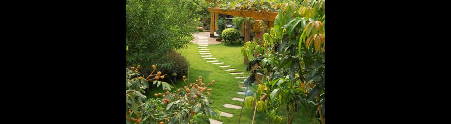 Tapes pour la cr ation d 39 un chemin paysager dans votre jardin bricolage maison - Faire un chemin dans son jardin ...