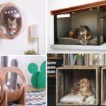 Meubles design pour animaux de compagnie