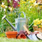 Nettoyage de printemps pour le jardin