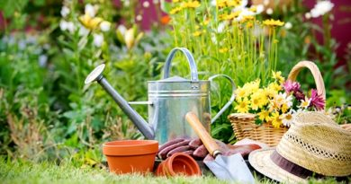 nettoyage jardin printemps