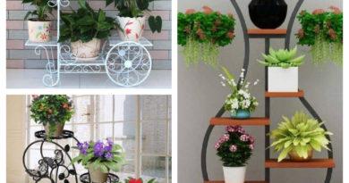 plantes intérieures fer forgé