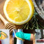 Recettes fait maison pour éradiquer les virus de votre intérieur