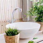 Apporter une touche de verdure dans sa salle de bain