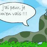 Solutions naturelles pour combattre les limaces dans le jardin