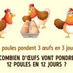 Énigme : poules et œufs