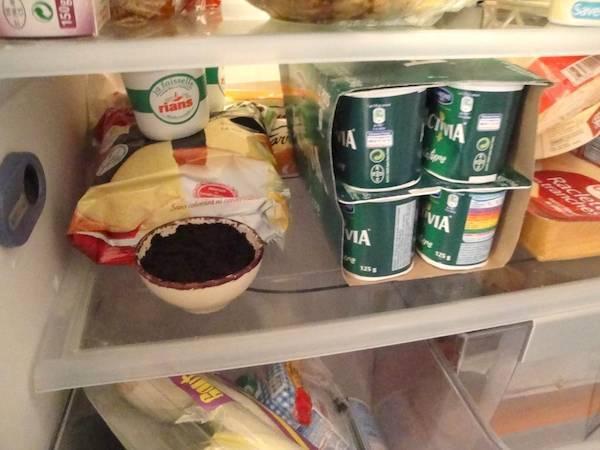 marc café desodoriser frigo