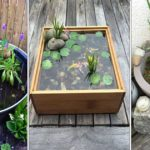 Les conseils pour réaliser un bassin de plantes aquatiques