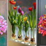 Comment avoir des belles tulipes ?