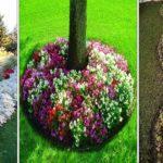 Cultiver des fleurs en bordure : choix & méthode