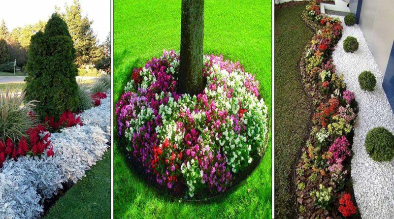 fleurs de bordures
