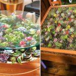 Suivez ces étapes faciles pour créer des tables avec des plantes succulentes
