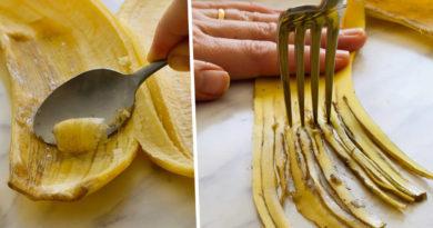 utilisations pelure banane