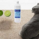 Comment supprimer l'odeur de pipi ou de l'urine de chat ?