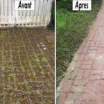 Éliminer la mousse naturellement sur une terrasse