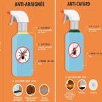 Répulsifs naturels et efficaces contre les insectes !