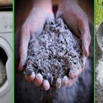 10 astuces étonnantes que vous pouvez faire avec du cendre (jardin et maison)
