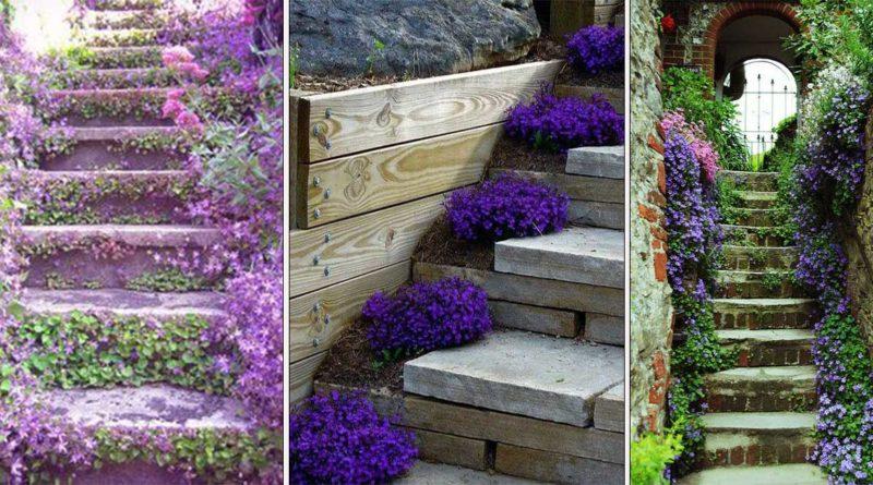 deco escalier plantes et fleurs