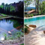 Bassins et piscines naturels : conception, entretien