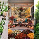 Planter des fleurs sur sa terrasse  et les astuces pour les entretenir